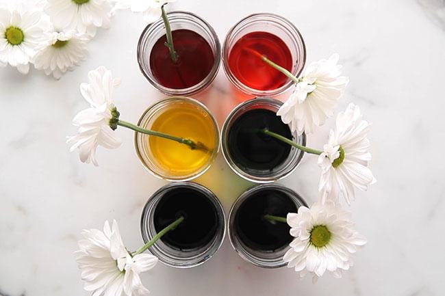 Add Flowers into Jars