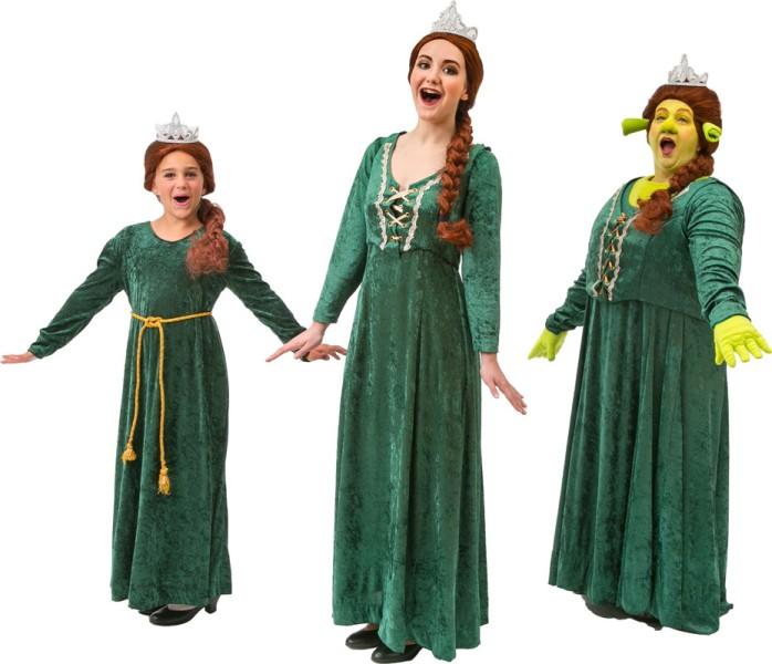 Dragon From Shrek Costume