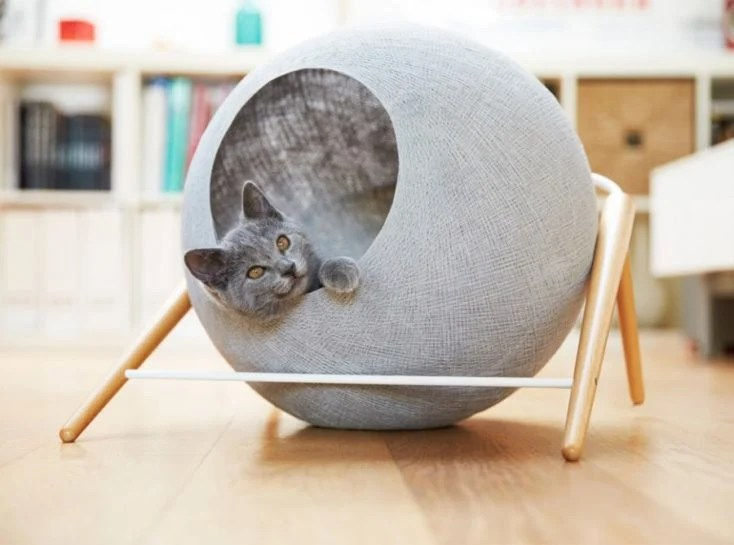 Creative Ways To Incorporate Pet Items Into Your Home D 233 Cor