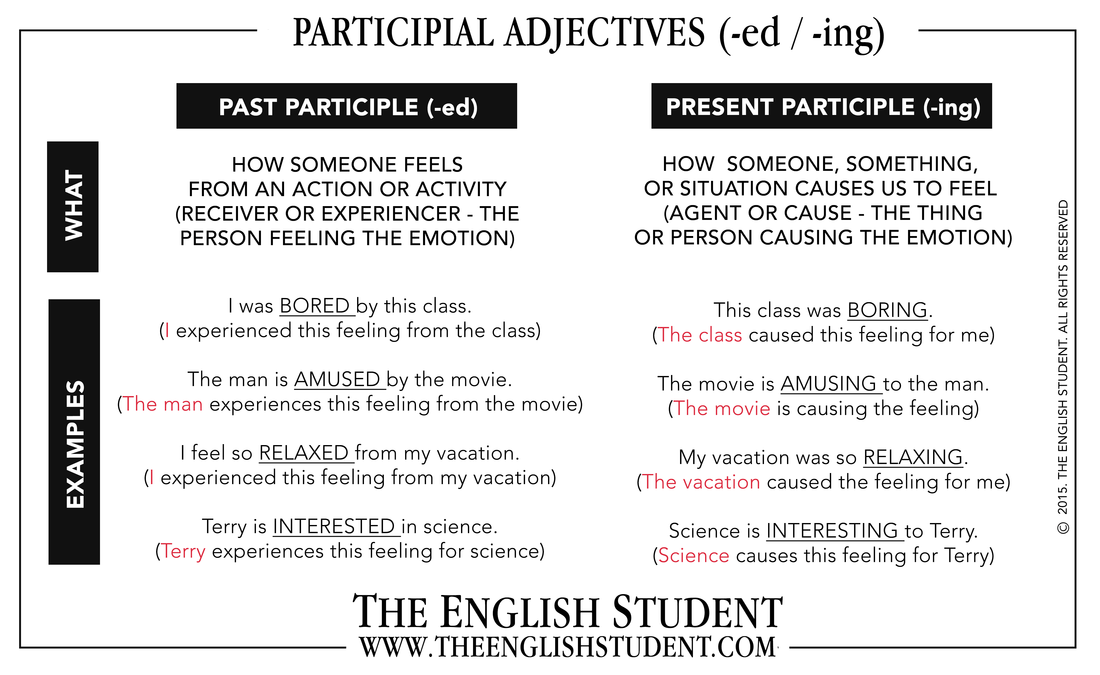 Difference Between Past Simple And Past Participle