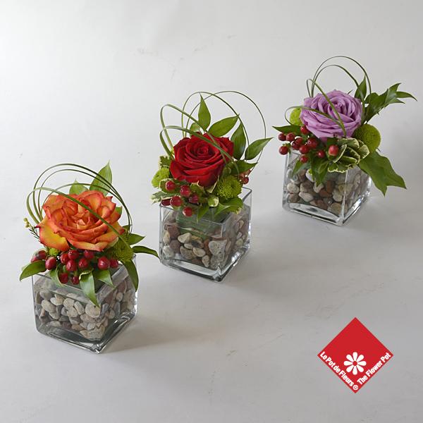 Rainbow Roses Order Online