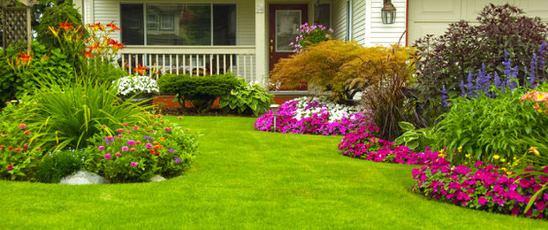 7 Easy Ideas To Create A Beautifully Landscaped Yard The