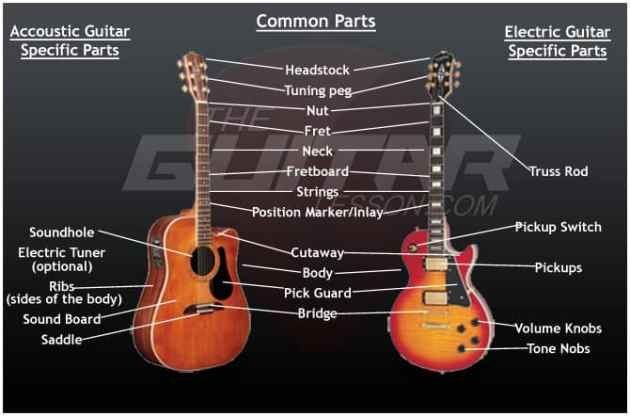 Guitar Anatomy   TheGuitarLesson com Electric acoustic guitar anatomy   parts