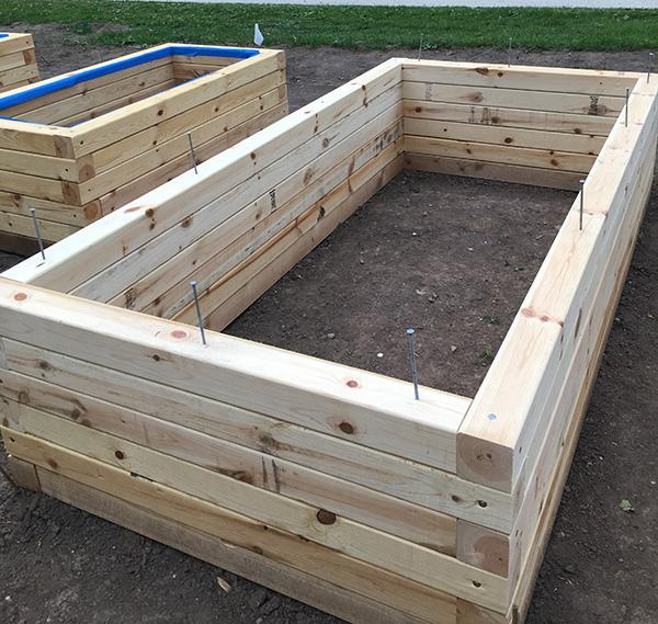 Raised Vegetable Garden Construction