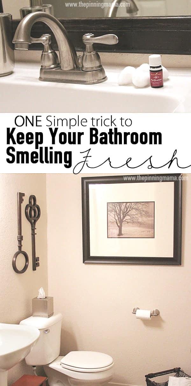 Freshen Your Bathroom Air 3 w