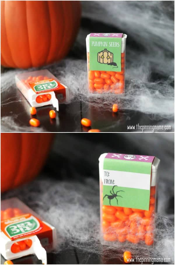 These Halloween tic tacs with free printable labels are so much better to give out than candy on Halloween.  So cute!