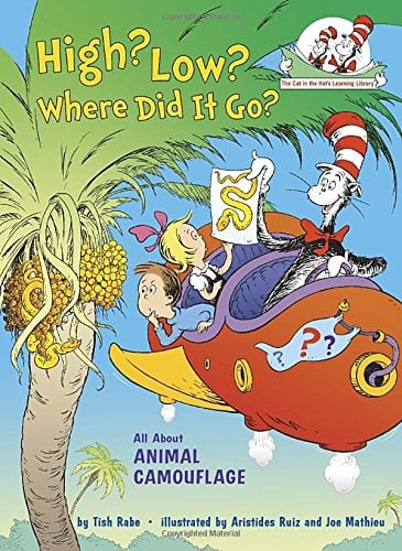 10+ Top Books for Kids to Read this Summer: High? Low? Where did it Go?| www.thepinningmama.com