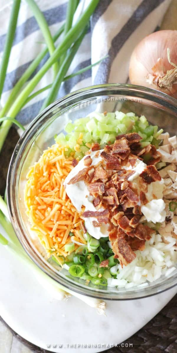 Chicken Salad Ingredients Shown in bowl: Chicken, Mayo, Celery, Onion, Cheddar Cheese, fresh bacon crumbles