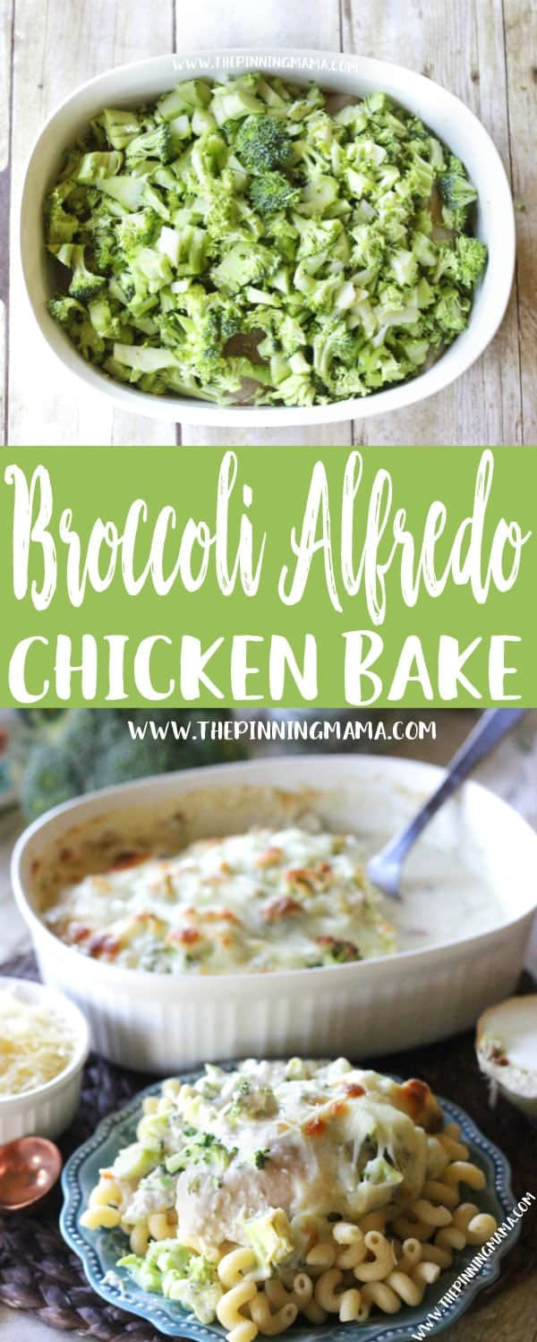 Easy + Delicious = Perfect dinner!! Only one dish and a few ingredients and you come out with a hot fresh super delicious dinner. This Easy Broccoli Alfredo Chicken Bake Recipe is perfect when you are looking for easy weeknight dinner ideas. Add this to your weekly meal plan!