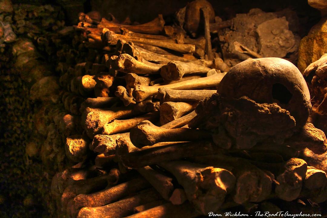 pile of bones - 1024×682