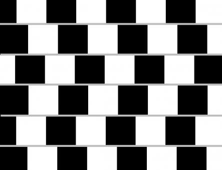 optical illusions eye tricks # 38