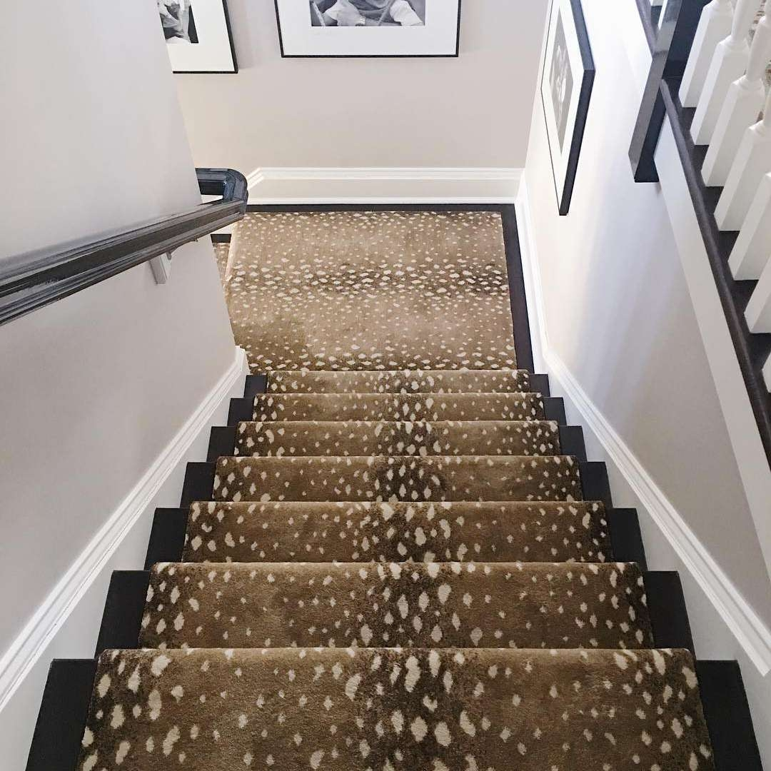 13 Best Carpet Trends For 2020 | Quirky Carpets For Stairs | Designed | Statement | Popular | Flower Patterned | Flowery