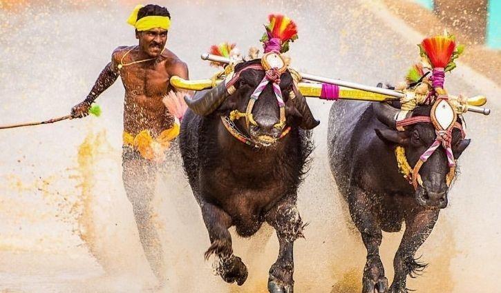 Srinivasa Gowda