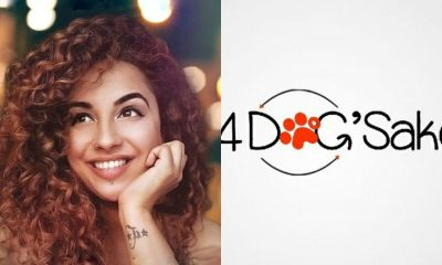 4 Dogs Sake India