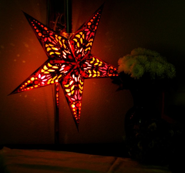 21 Sparkle And Creative Outdoor Christmas Decorations