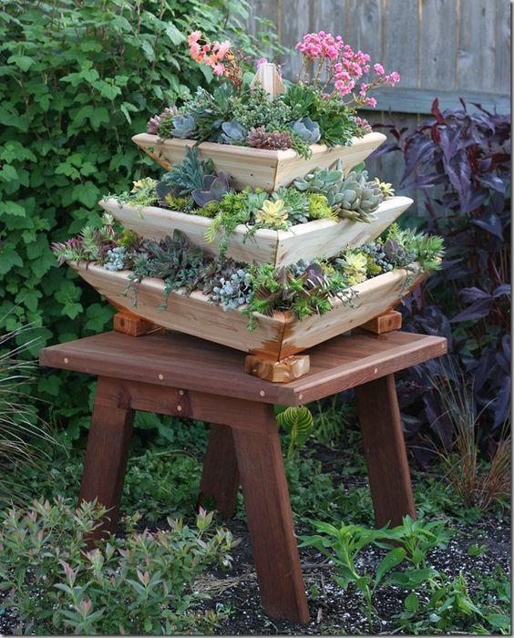 Succulents Pots Terracotta