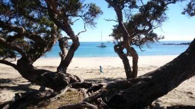 Cactus Bay