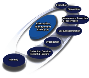 IM Plan Template   Business Projects IT Enabled      Full      version     The following diagram illustrates 7 stages comprising the life cycle of  information assets  1 plan