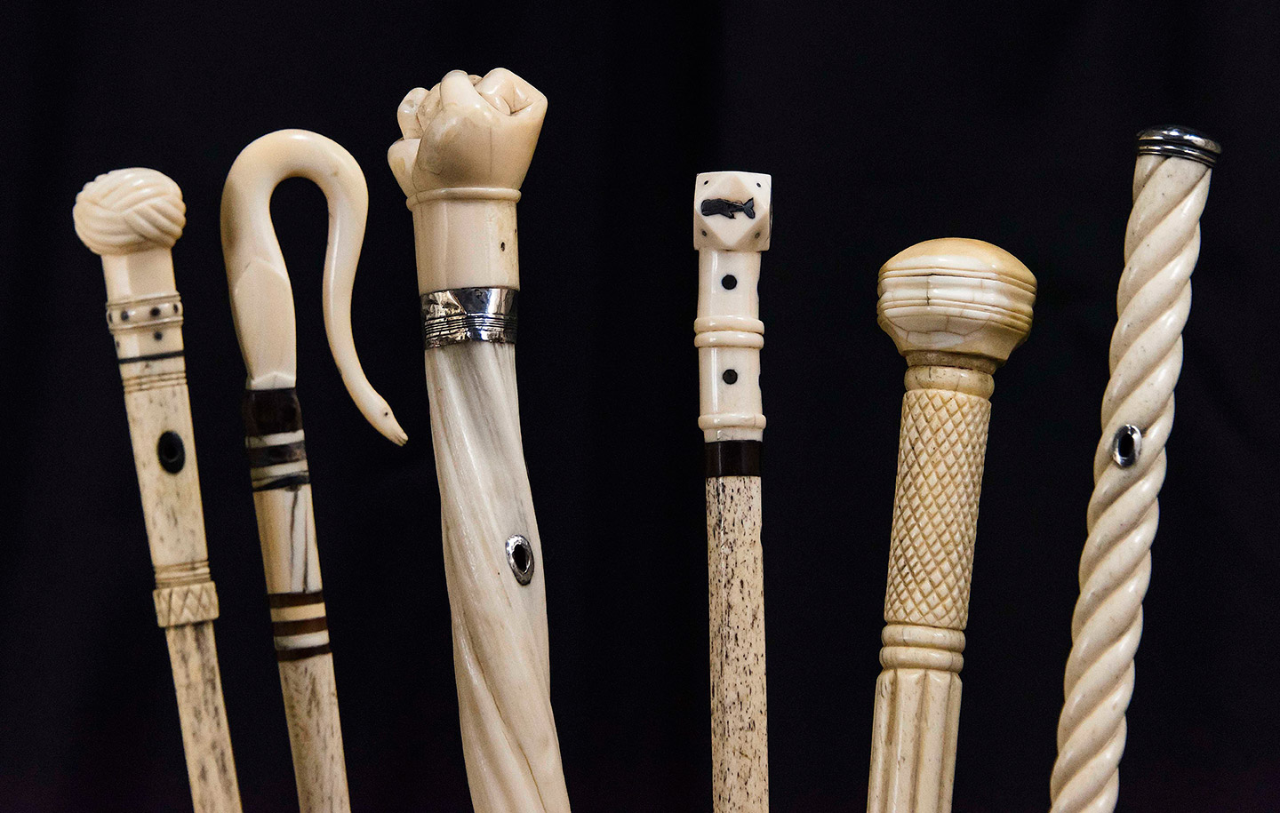 Selections from the Charles H  Hood Antique Cane Collection     Tradewinds Selections From The Charles H  Hood Antique Cane Collection