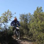 trail riding in spain - Olive Groves trails