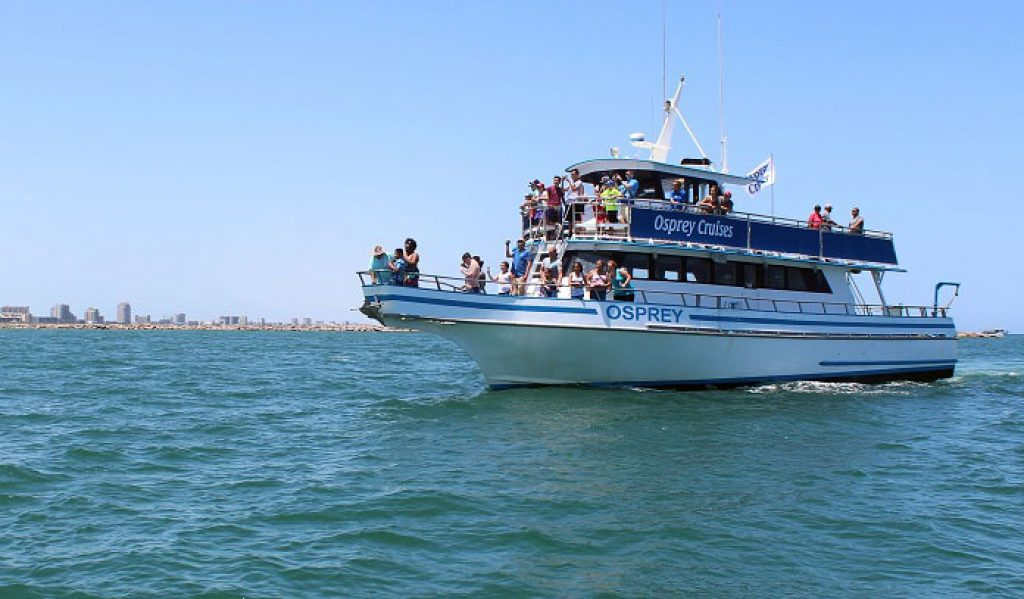 south padre island cruises 1024x599 - Things to do in South Padre Island