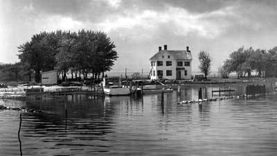 Pictures: Holland Island in Chesapeake Bay vanishes ...