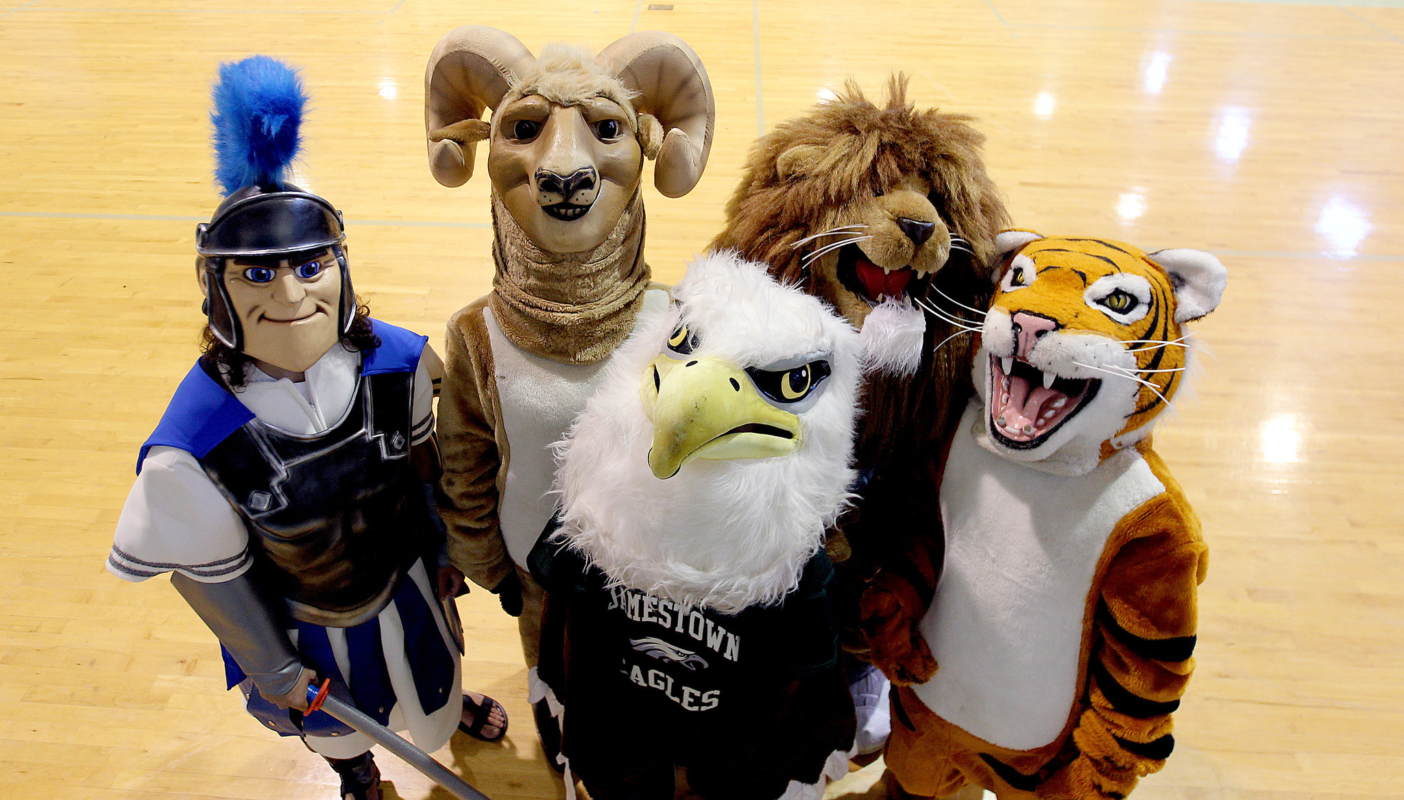 High School Sports Mascots