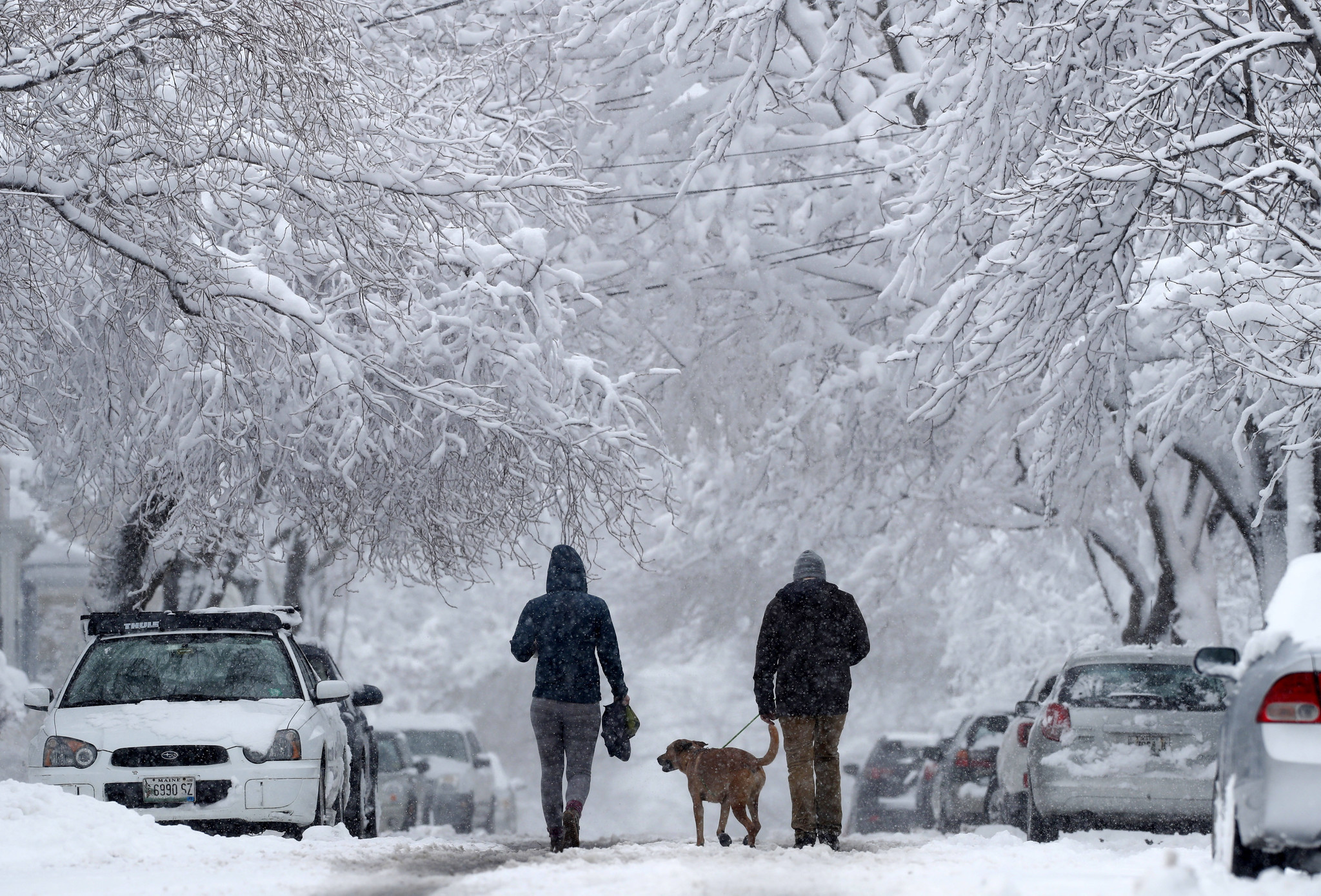 Northeast Braces For 3rd Nor Easter In Less Than 2 Weeks