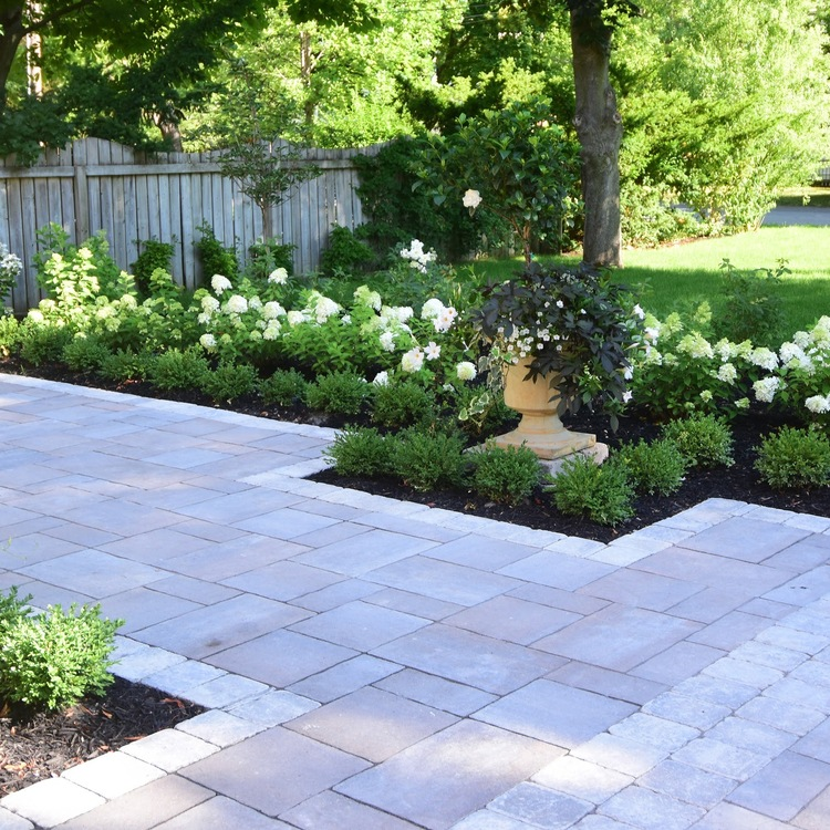 Plantings Main Category Tree Amigos Landscaping Inc