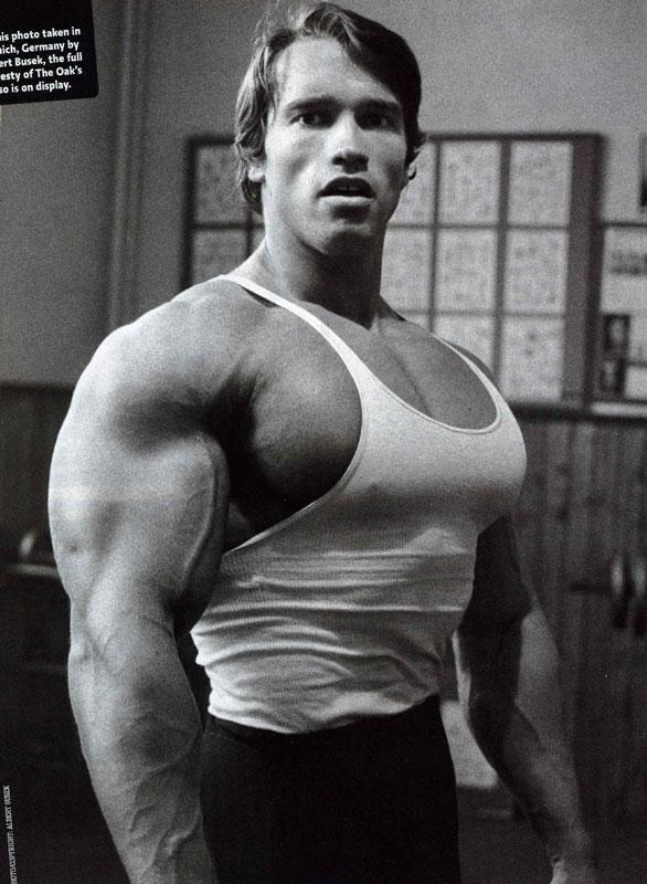 Arnold Schwarzenegger Bodybuilding Chest