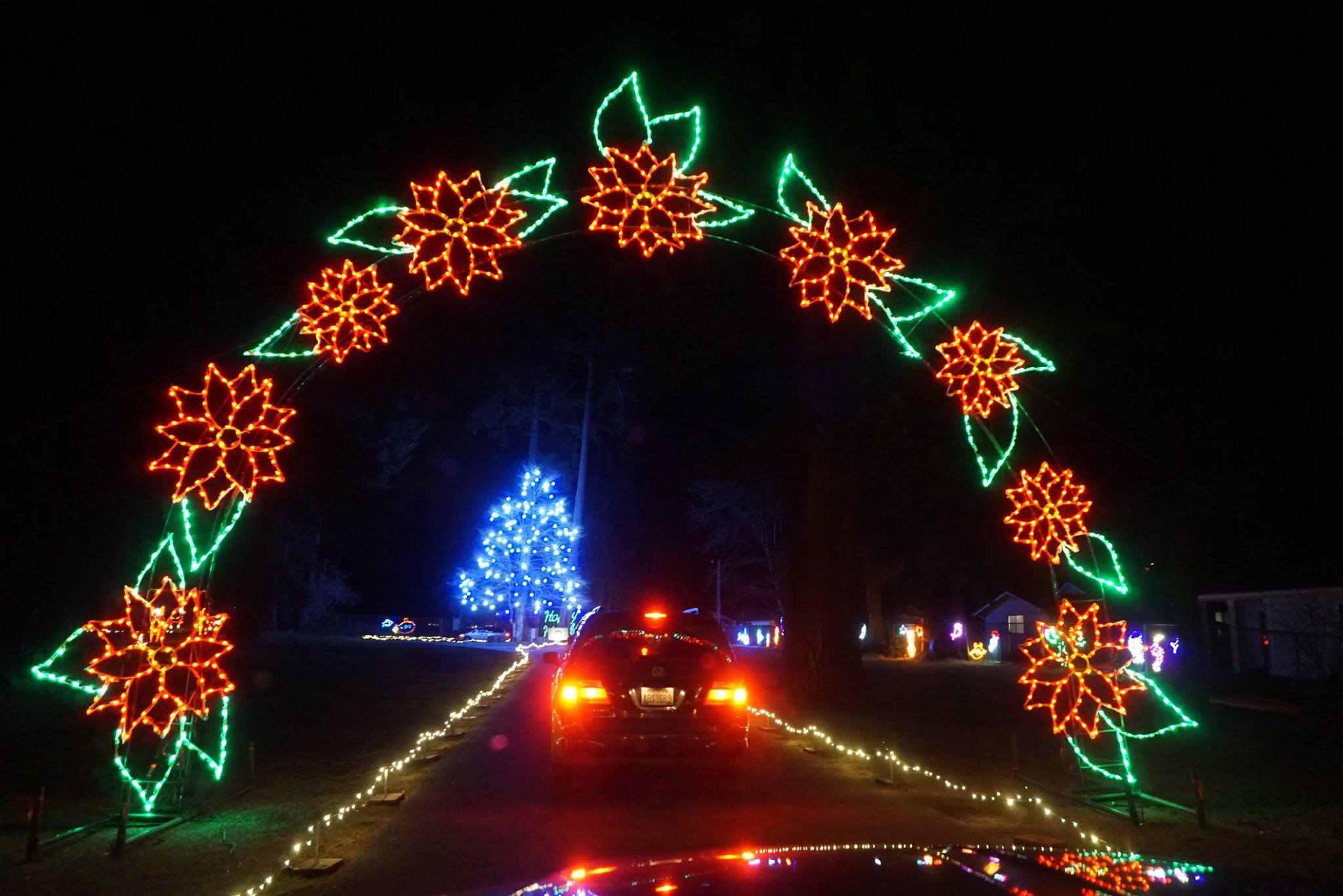 Zoo Lights Wa
