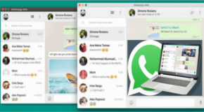 WhatsApp pour Windows 0.3.557