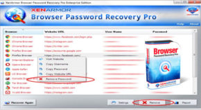 Browser Password Recovery Pro Enterprise 3.5.0.1