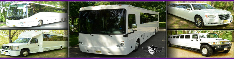 NJ Party Bus and Limos WOODLAND PARK NEW JERSEY PARTY BUSES