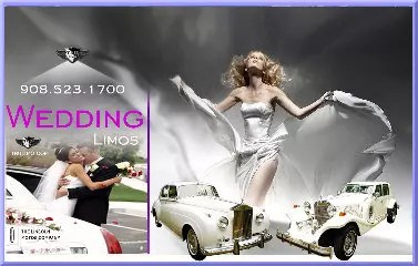new jersey wedding limo rental NJ PARTY BUS & LIMO RENTAL