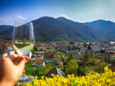 Bike Tour from Vienna – Wonderous bike tour among wineries in the Wachau valley