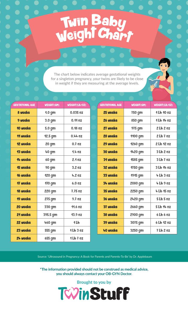 Twin Feeding Chart Printable