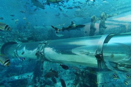 atlantis hotel underwater slide full hd maps locations another