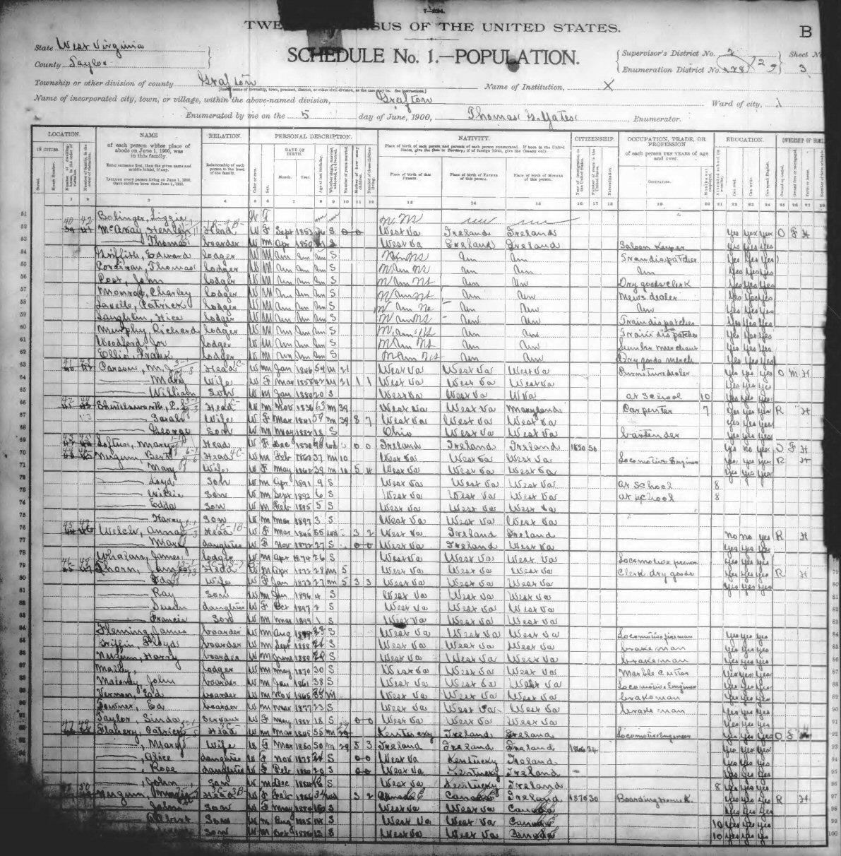 T Yl County Wv 1900 T V Census Dex