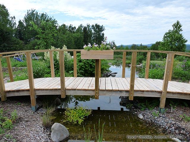 Garden Stream And Pond Idea Backyard Stream Building Guide