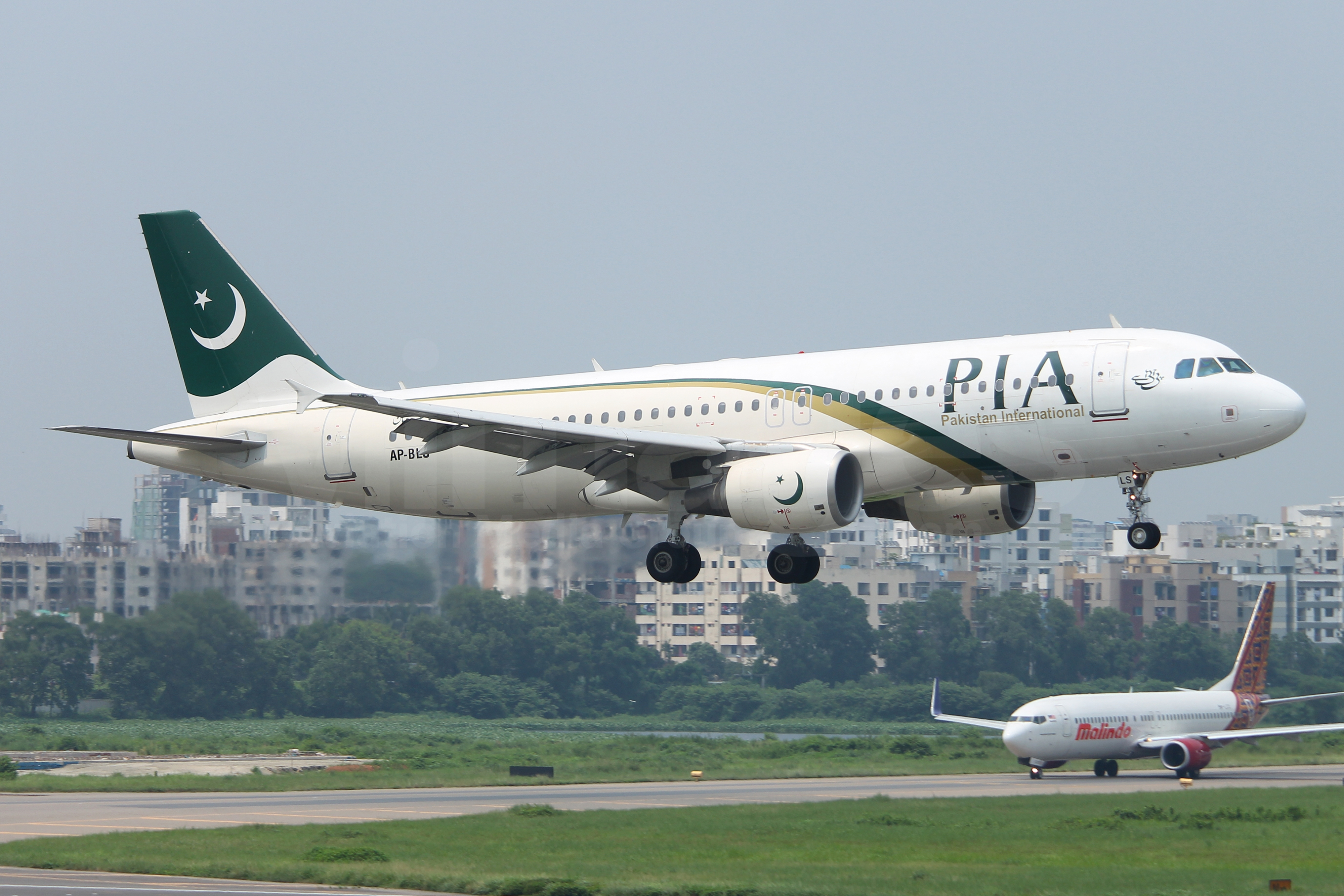 pia airlines website - 1280×720