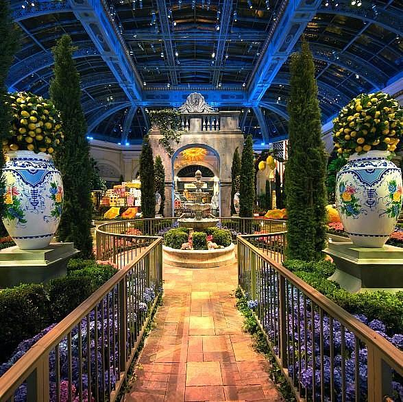 Bellagio S Conservatory Amp Botanical Gardens Celebrates