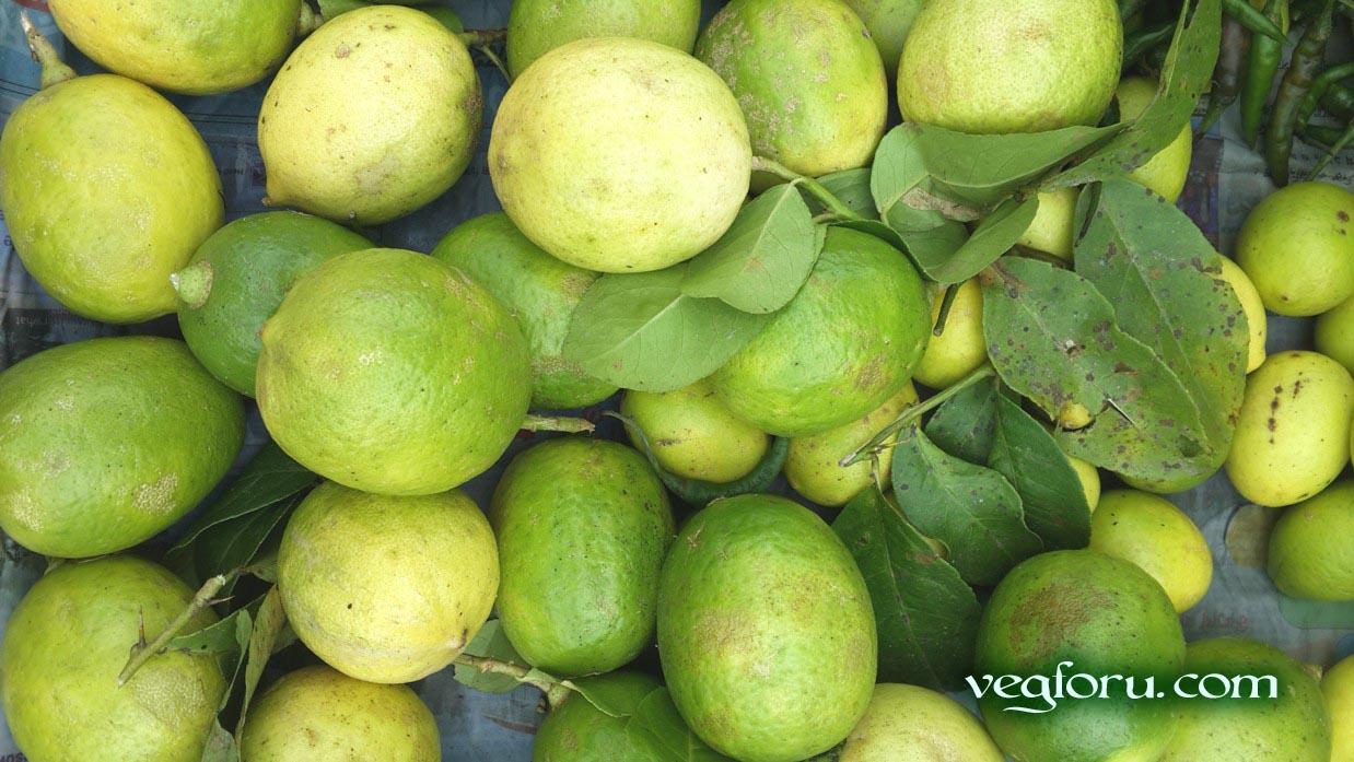 How Make Grated Lemon Rind