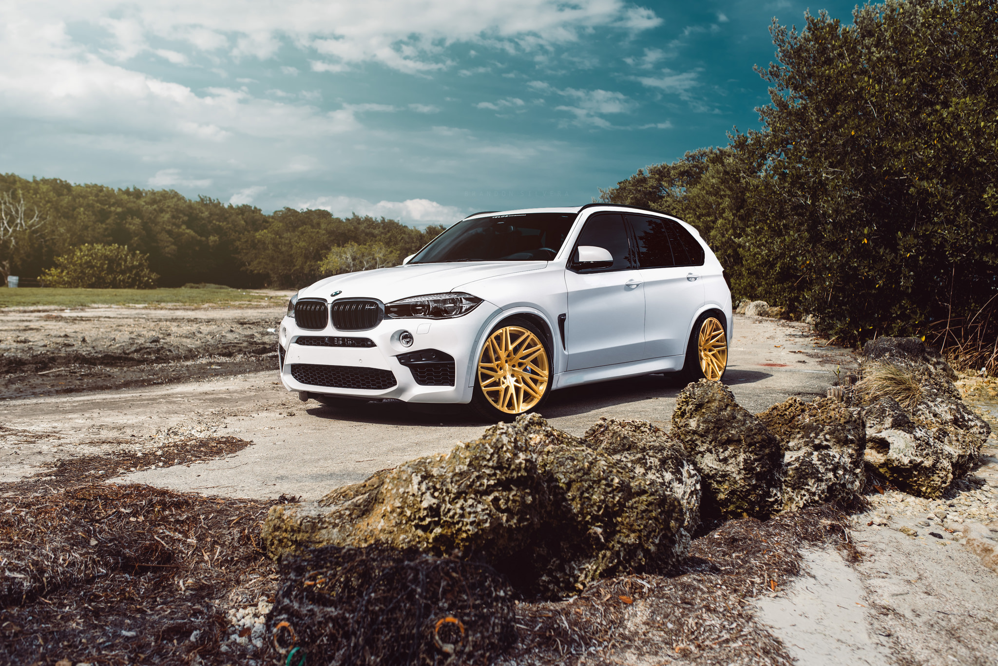 2016 Bmw Custom White X5