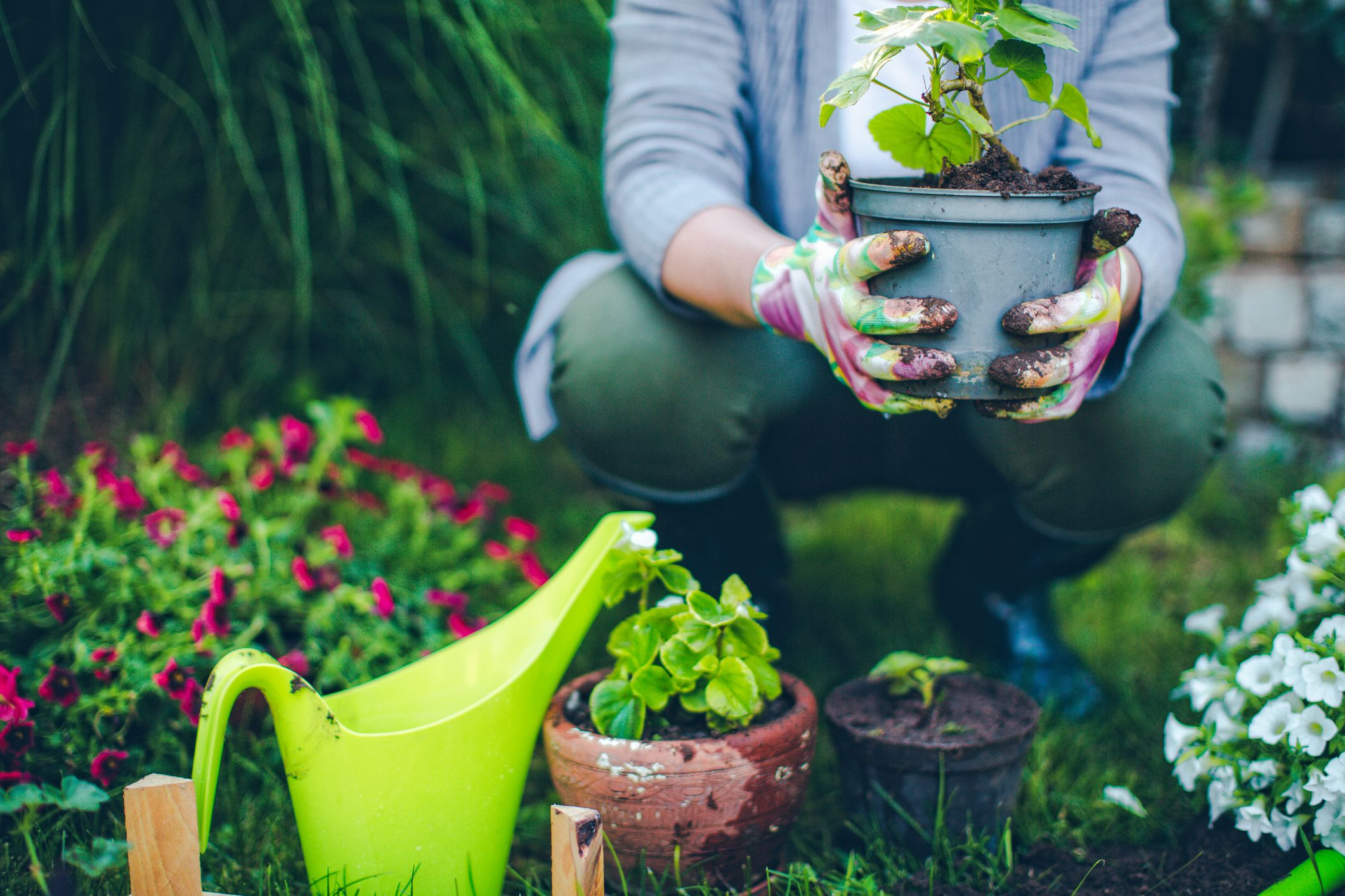 people gardening pictures - HD2121×1414
