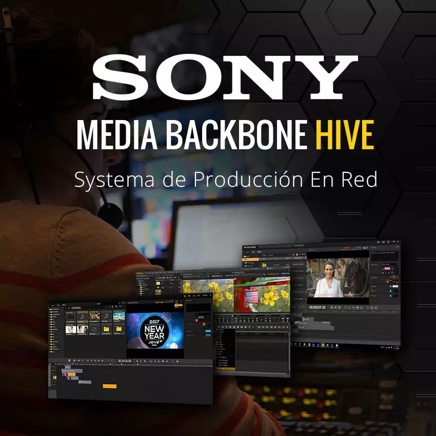 Sony Media Backbone Hive
