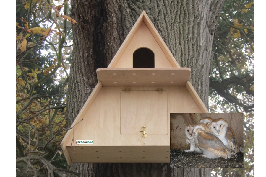 Barn Owl Box Camera System | Buy Online at Vine House Farm