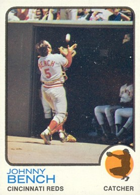 1973 Topps Johnny Bench 380 Baseball Card Value Price Guide
