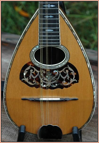1900 Martin Style 4 Mandolin