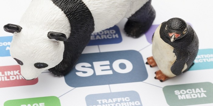 Three SEO Blunders That Can Bring the Wrath of Panda and Penguin According to SEO Expert USA
